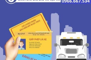 Lái xe tải cần những giấy tờ gì và mức xử phạt khi vi phạm